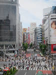 Famous Intersection in Tokyo