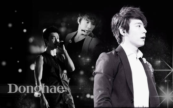 Handsome Donghae