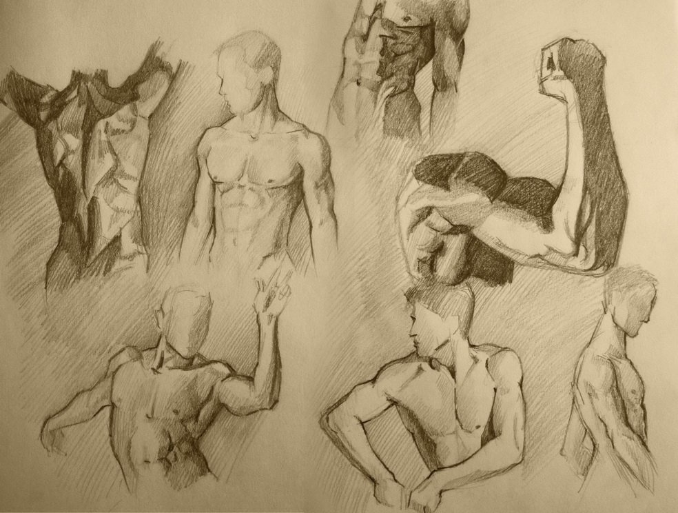 Male body practice by TanyaGreece on DeviantArt