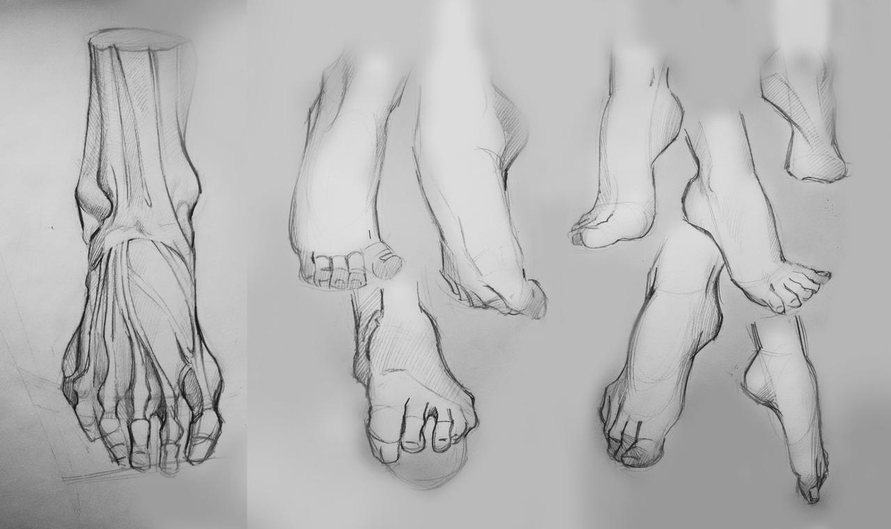 Foot-anatomy practice by TanyaGreece on DeviantArt
