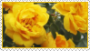 Yellow roses Stamp by ChuChucolate