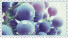 Blueberries Stamp by ChuChucolate