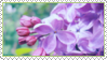 Flower Stamp by ChuChucolate