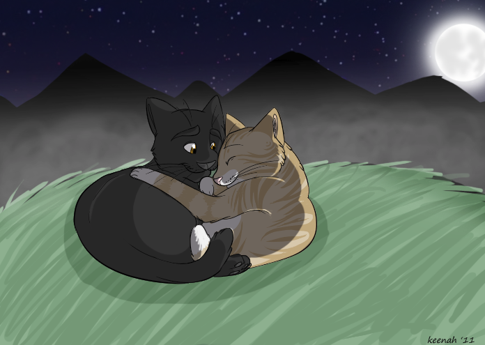 leafpool and crowfeather by keenah on deviantart