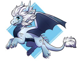 Dragon Prince- Zym