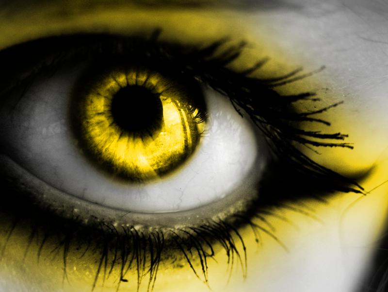 yellow eyes - photo #19