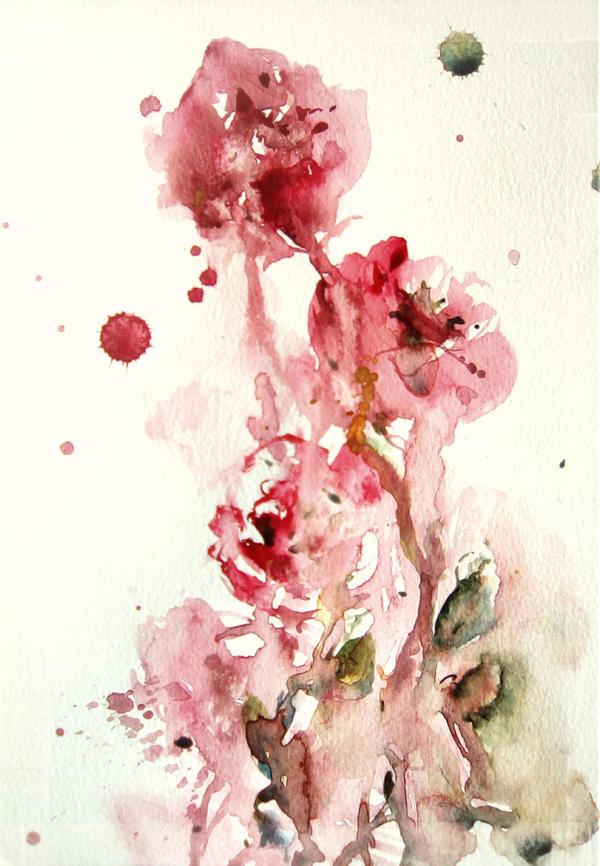 Rose by verda83