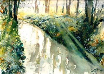Mattino nel fiume by verda83