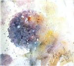 Schizzo d aglio by verda83