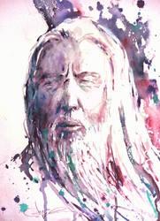 Gandalf moment by verda83