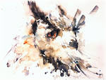 Owl sketch by verda83