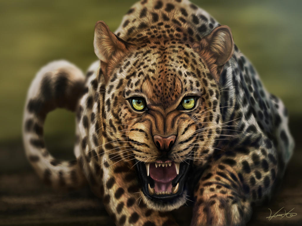 Leopard by GoldenPhoenix100