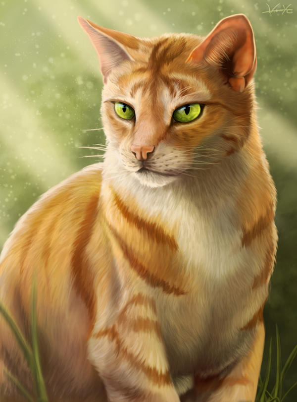 Firestar By Golphee On Deviantart Warrior Cats Book Series Images Cover Wallpaper And Background Photos