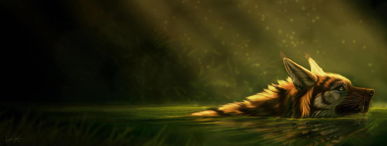 Tranquil Waters by GoldenPhoenix100