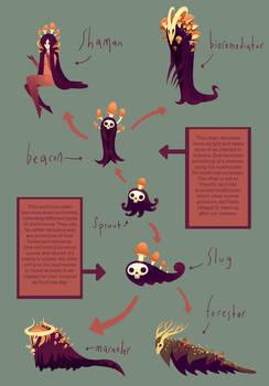 Skullshroom evolution