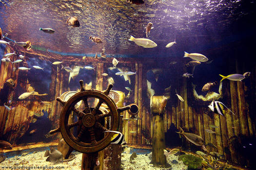 Underwater