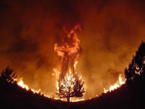 Fire Demon by PopeFucker