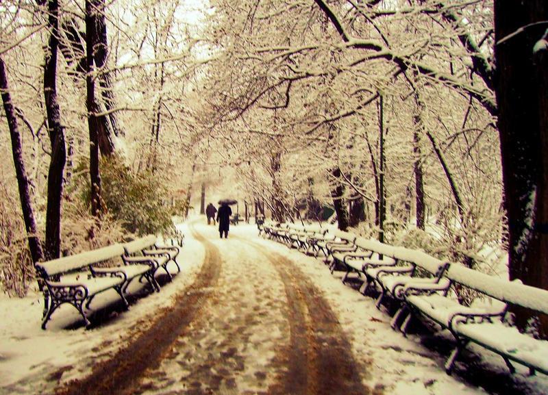 Winter's strangers by IoaSan