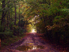 The autumn creation by IoaSan