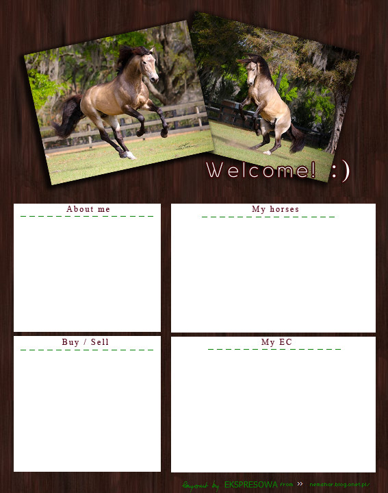 Howrse Layout no.1 by primeinfante on DeviantArt  Layout