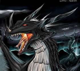 Dragon Collaboration by QuaikerOatmeal