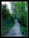 Aredhel's path by Danutza88