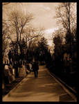 Cemetery: Road to death by Danutza88