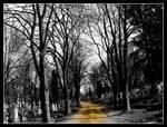 Cemetery: Road by Danutza88