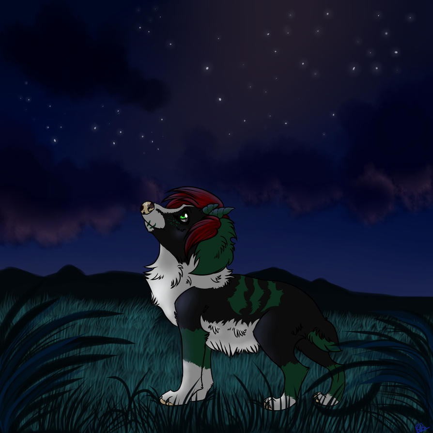 #52 - A Night Under The Stars by Kneel4Loki13