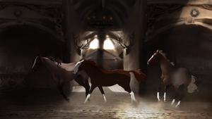 Arryn Hall's Obertaurer herd