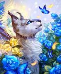 Blue roses