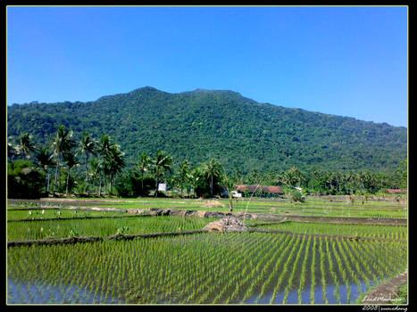 panorama in sumedang INDONESIA