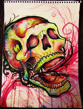 abstract color skull