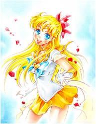 Sailor-venus by Naschi