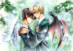 Harry Potter: Yin and Yang