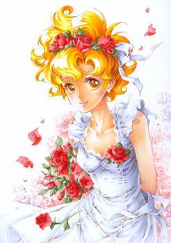 a dream of roses
