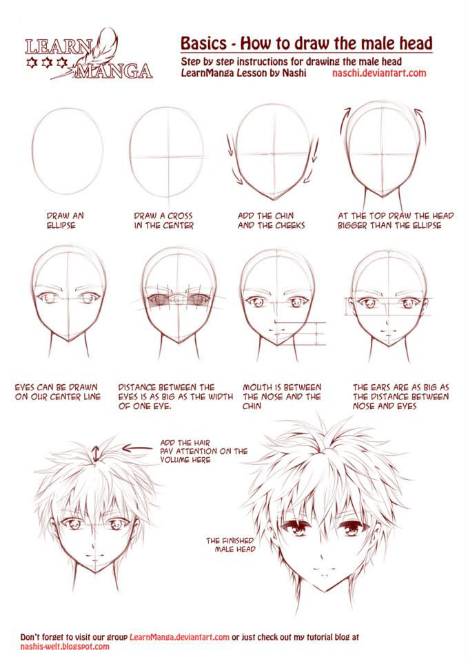 Learn Manga: How to draw the male head front by Naschi