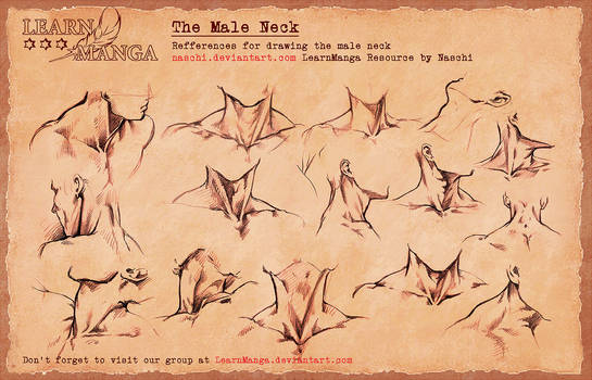 LearnManga The Male Neck
