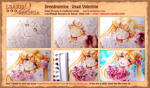 Valentine Sailor Moon VIDEO