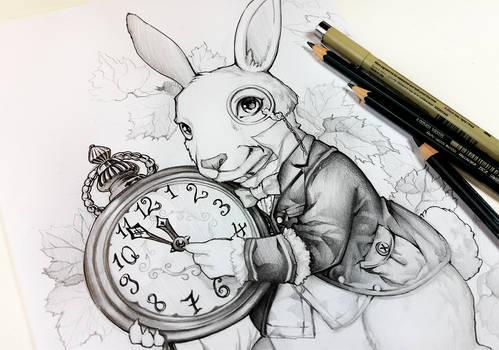 Siga o coelho branco por Naschi