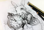 Follow the white Rabbit by Naschi