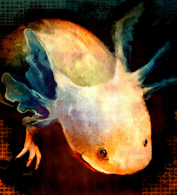 Shining Axolotl by MirraGray