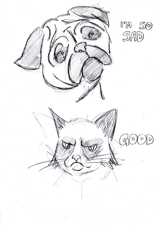 Sad Pug Meet Grumpy Cat By TommyBoyCreations On DeviantArt
