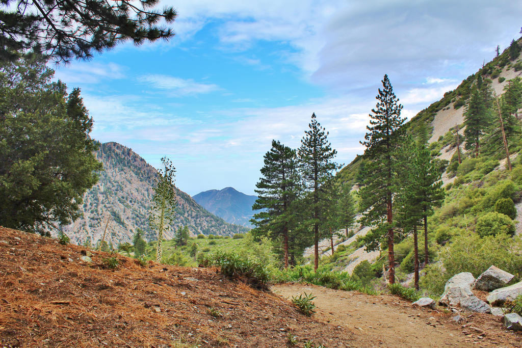 Hiking Lesson #7 by lilluvlyan9el