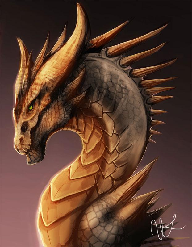 Bronze Dragon by magmi