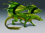 Kiwi Dragon