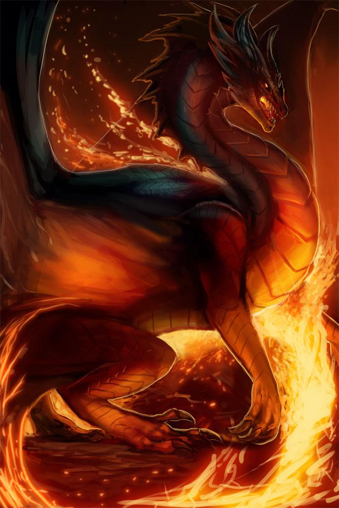 Fire Dragon by magmi on DeviantArt