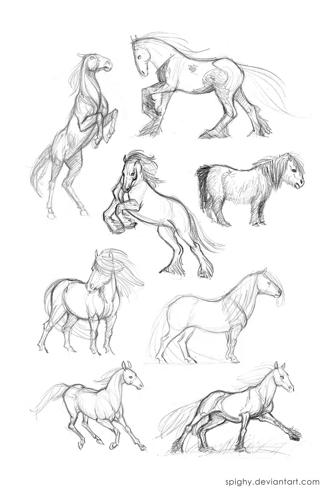 how to draw horse hooves