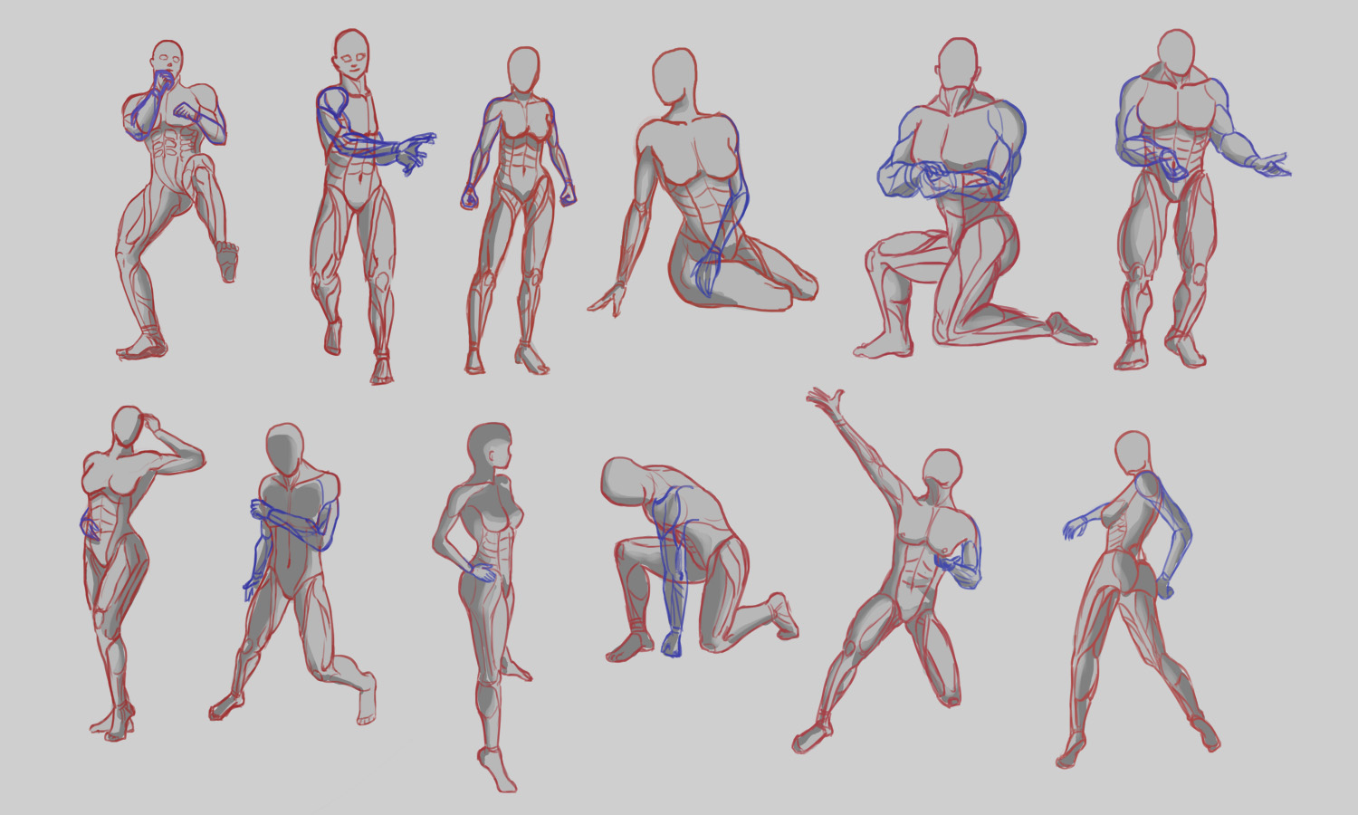 Anatomy Poses By Ck95 On Deviantart