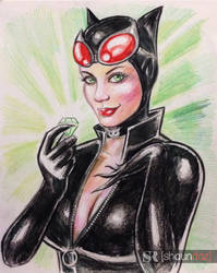Catwoman by shaunriaz